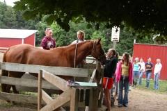 Bringing Horses In