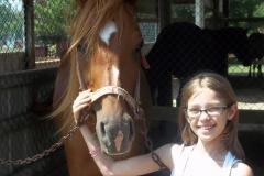 br-horses-2